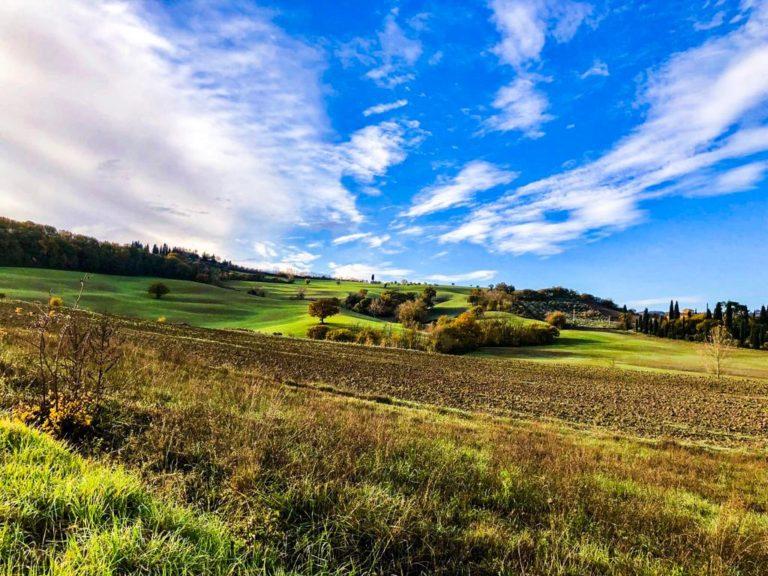 landscape 768x576 1